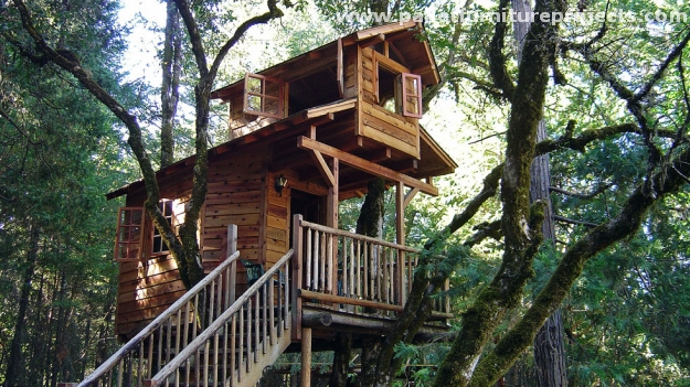 Wood Pallet Tree Houses Pallet Furniture Projects
